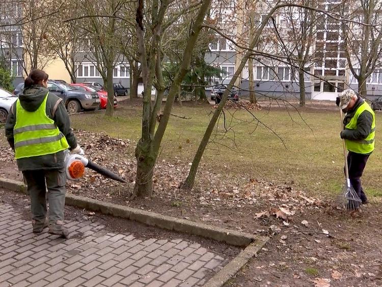 A deákvári lakótelepekrõl is szállítják a faleveleket