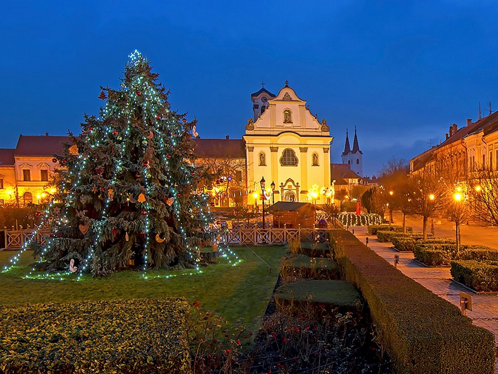 Az ön fenyője lehet a Város Karácsonyfája